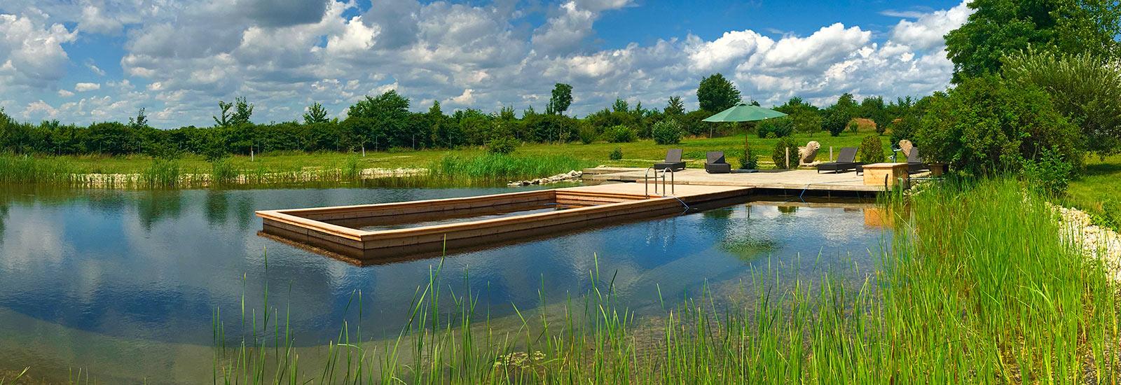 Schwimmbereich im schwimmteich naturteich see for Naturteich schwimmteich
