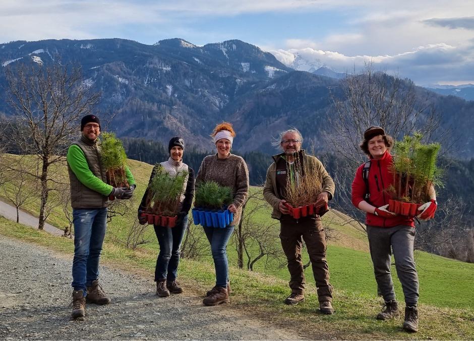 Team von Holc Naturpools beim Wald bepflanzen