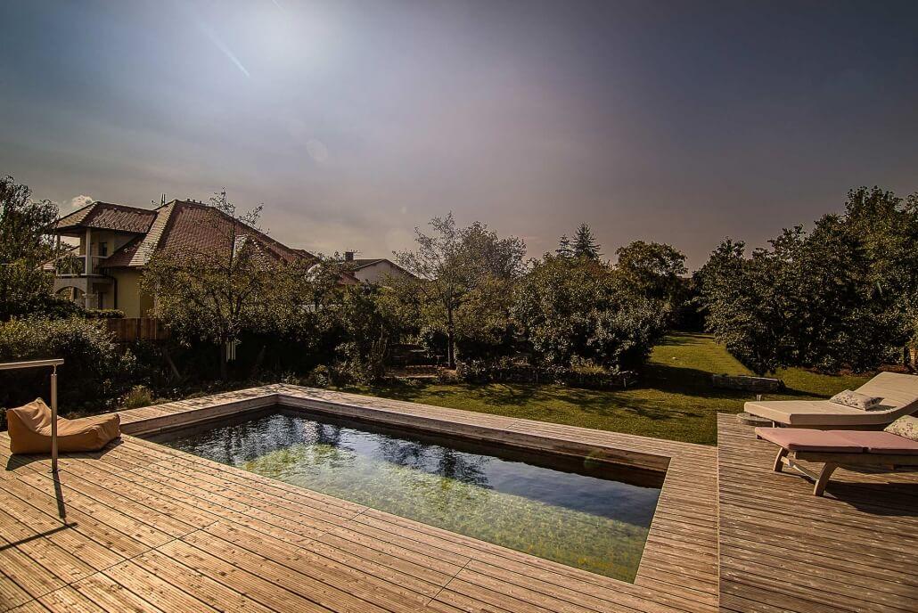 Gartenanalge zeigt einen Holc Naturpool in Abendstimmung