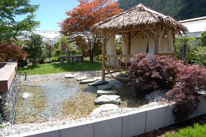 Gartenhaus mit Holc Naturpool